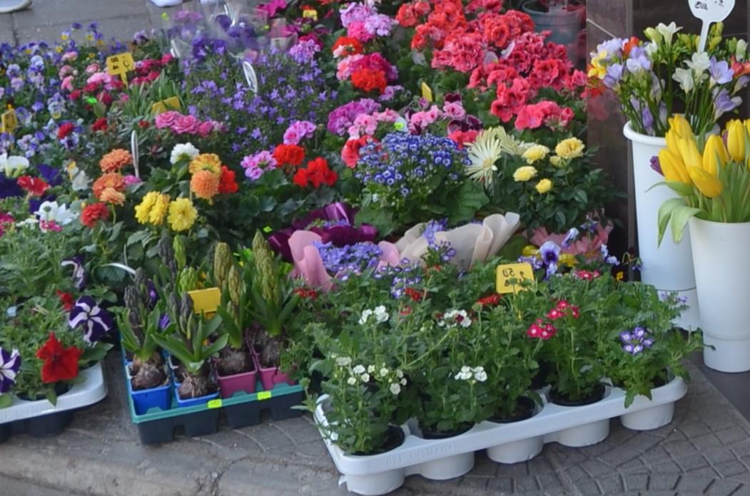 Пазар на Цветята